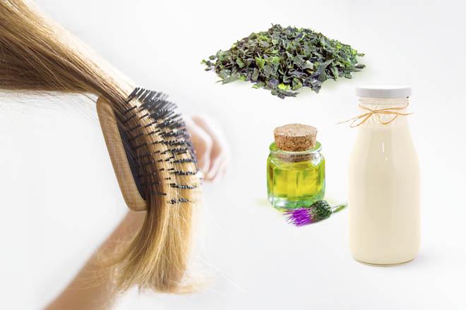 Маски для волос с ламинарией в домашних условиях