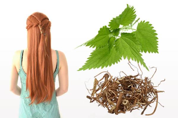 Маска для роста волос из отвара крапивы
