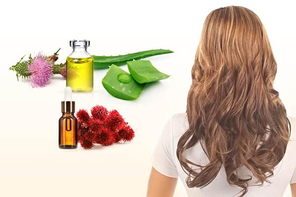 Репейное и касторовое масло для роста волос